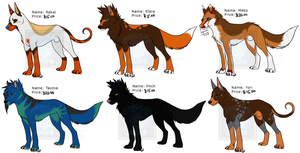 [Cash Adopts] - OC's To Sell - [2 LEFT] by Linkaton