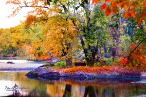Fall   Kishwaukee River State Forest Preserve by DanaHaynes