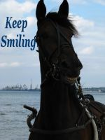 Keep Smiling by Mercilies