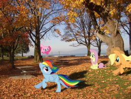 A Day in the Park by DestructoDash