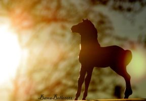 Watching The  Sunset by BamaBelle2012