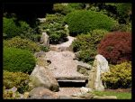 Japanese Step Garden by FT69