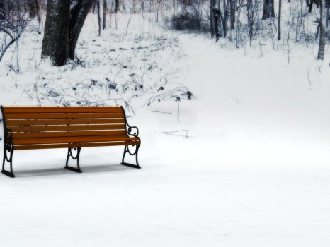 Winter Background 6 by BlackStock