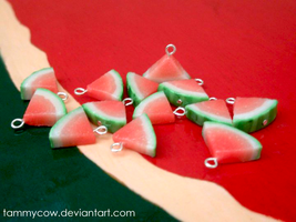 Watermelon charms by tammycow