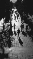 Long shadows in Murray Street by westaussie