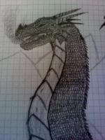 A rather pissed off dragon. by Nethernar