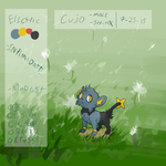 PKMNation - Cujo by Vuohii