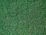 Astro turf 2 by jaqx-textures
