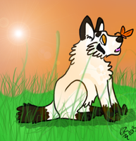 Lens Flare, Grass, and Sunshine by TimeForLols
