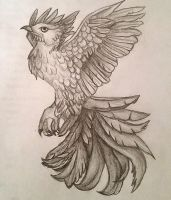 Phoenix Drawing by Kaitlin73