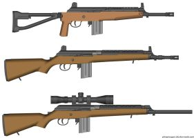 World War Z Standard Infantry Rifle (SIR) by Pscan13