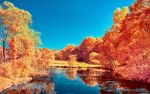 The colors of Autumn - Part V by myINQI