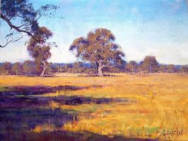 Summer Australia by artsaus