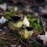 Earthball After Explosion by freemax