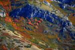 The Fires of Fall by Delta406