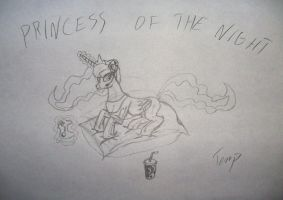 Princess of the night - first stage pt.3 by Temporal333
