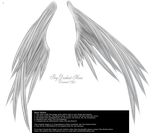 Wings of Madness PNG - Silver by Thy-Darkest-Hour