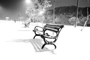 lonely bench by theprodiqy