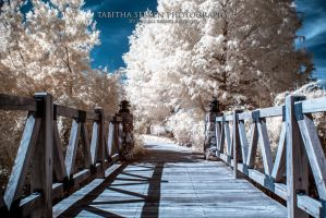 A Bridge To Another World by TabithaS-Photography