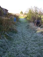 Chilly morning frost... by Artsy50