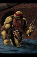 Raphael Colors by jamesq