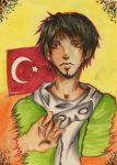APH - Turkey by rabbittracks