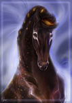 Commission: Nordy Portrait by Darya87