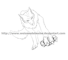 Wolf Line Art For Points 32611 by WeisseEdelweiss
