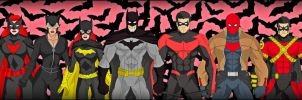 The BatFamily - New 52 by DraganD