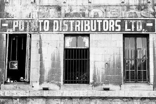Potato Distributors Ltd. by dandude666