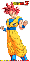 Son Goku SSJ GOD by DrabounZ