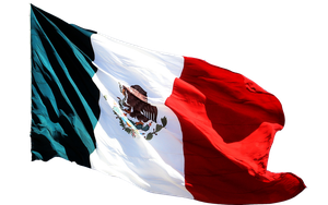 Bandera Mexico by DIGITALWIDERESOURCE