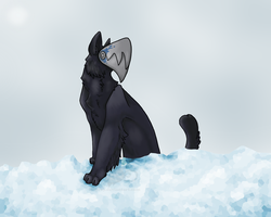 Stand On Glacier by Incyray