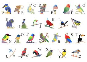 Alphabet of Birds by xxcaitieq