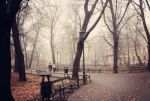 The foggy morning in Cracow by BlueColoursOfNature