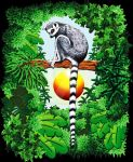 Lemur of Madagascar by Bluedarkat