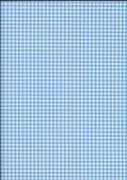 Blue Gingham by BelovedStock
