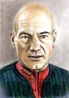 Patrick Stewart mini-portrait by whu-wei