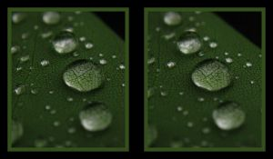 water drops 3 stereoscopic by pwg