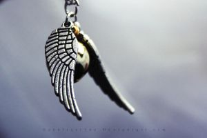 Silver Wing by Schnitzelyne