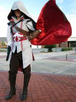 Auditore Pride by Waltzingkitty