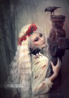 A Wounded Soul by Celtica-Harmony