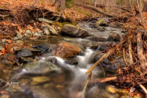 HDR Spring Stream 5 by Nebey