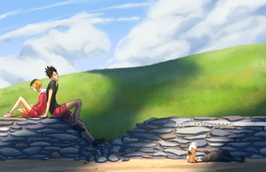countryside by skie-balloon