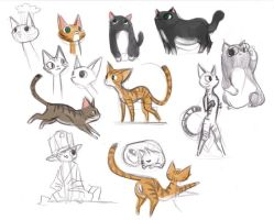 cat sketches by victoriaying