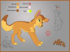 Hira-Reference 2010 by Kitchiki
