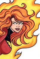 Dark Phoenix Headshot4 by RichBernatovech