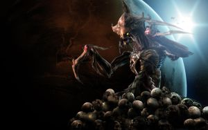 Through the skullls and bones by DP-films