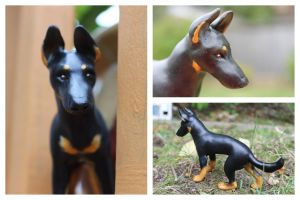 German Shepherd bicolor more views by Ingridda