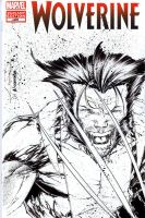 Wolverine sketchcover... by adelsocorona